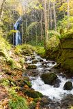 Oirase stream with waterfall in Japan Royalty Free Stock Image