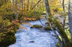 Oirase strumienia rzeka Fotografia Royalty Free