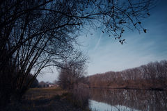 Ois da ribeira公园  库存图片