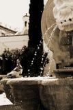 Oiseau à Séville Photographie stock libre de droits