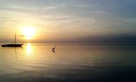 Oiseau au lever de soleil Image libre de droits