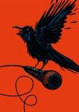 Oiseau avec un microphone Images libres de droits