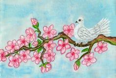Oiseau blanc sur le branchement avec les fleurs roses, peignant illustration libre de droits