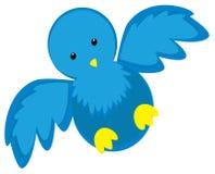 Oiseau bleu Photos stock