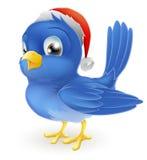 Oiseau bleu dans le chapeau du père noël Photos libres de droits