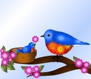 Oiseau bleu de bébé donnant la fleur à la maman Images stock