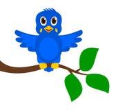 Oiseau bleu exotique sur une branche Photos stock