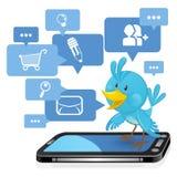 Oiseau bleu social de medias de gestion de réseau Images libres de droits