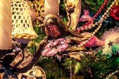 Oiseau décoratif sur le branchement Photographie stock libre de droits