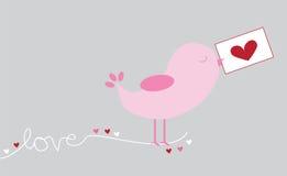 Oiseau d'amour Photos stock