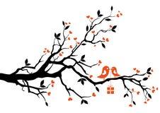 Oiseau d'amour avec le cadre de cadeau,   Images libres de droits