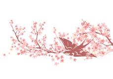 Oiseau d'hirondelle parmi la conception de vecteur de fleur de cerisier Photographie stock libre de droits