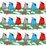 Oiseau d'isolement sur le fond blanc Photographie stock libre de droits