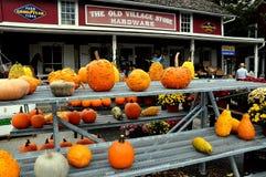 Oiseau-dans-main, PA : Potirons au magasin de village Photo stock