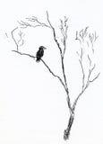 Oiseau dans un arbre Photo stock