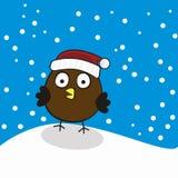Oiseau dans un chapeau rouge sur des chutes de neige d'hiver de fond Images libres de droits