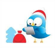 Oiseau de bleu de twitter de Noël Photo libre de droits