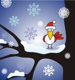 Oiseau de l'hiver Image libre de droits