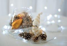Oiseau de Noël avec des cônes Photos libres de droits