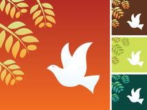 Oiseau de paix Photographie stock