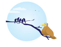 Oiseau de poids excessif. Photo libre de droits