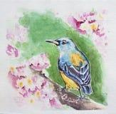Oiseau de ressort illustration de vecteur