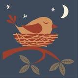 Oiseau de sommeil Photographie stock libre de droits