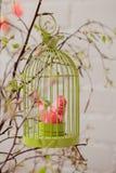 Oiseau de textile dans la cage à oiseaux Photo stock