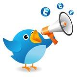 Oiseau de Twitter Photographie stock libre de droits