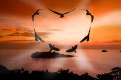 Oiseau de Valentine Photographie stock libre de droits