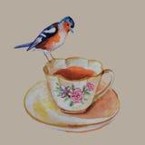 Oiseau de vintage sur la tasse de thé Photos stock