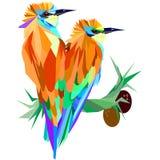 Oiseau deux tropical lumineux sur une branche avec des noix de coco Photos libres de droits