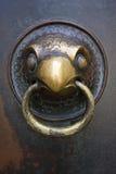 Oiseau en bronze image libre de droits