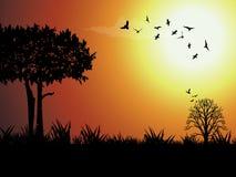 Oiseau et arbre de silhouette à l'extérieur Photo stock