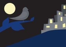 Oiseau la nuit Images stock