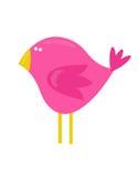 Oiseau mignon de modèle Image libre de droits
