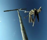 Oiseau mort sur un pilier, la mort Image stock