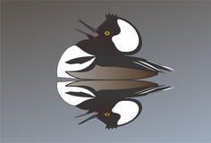 Oiseau noir étrange images libres de droits