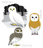Oiseau Owl Set Cartoon Vector Illustration Photos libres de droits