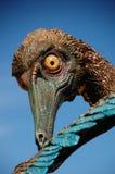 Oiseau préhistorique effrayant Images libres de droits