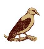 oiseau Retrait de vecteur Images libres de droits