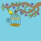 Oiseau se reposant sur la cage Photo libre de droits