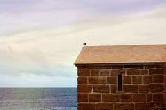 Oiseau se reposant sur le toit d'une vieille maison photographie stock libre de droits