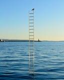 Oiseau simple sur l'échelle sur la mer image libre de droits