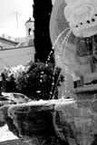 Oiseau sur la fontaine Photo libre de droits