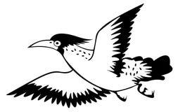 Oiseau sur le fond blanc pour la coloration Photo stock