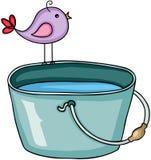 Oiseau sur le seau avec de l'eau Photos libres de droits