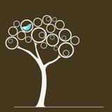 Oiseau sur un arbre Images stock