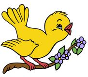 Oiseau sur un branchement Images libres de droits