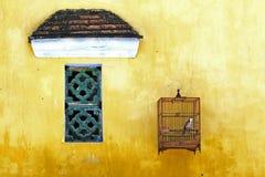 Oiseau tenu dans un lâche Photos libres de droits